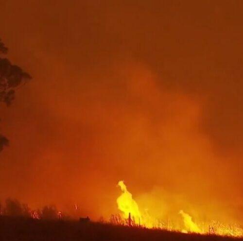 Cel puţin cinci persoane au murit, iar altele au fost rănite, în urma unui incendiu forestier de amploare în estul Ucrainei.