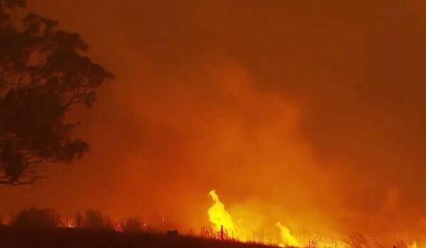 Un incendiu de vegetaţie face victime în estul Ucrainei